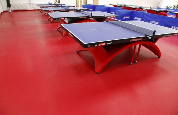 室内乒乓球场