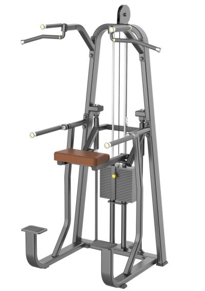 单双杠训练器  Evost2009-ADIJJ